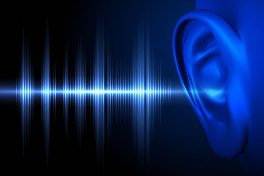 Audiophiles Ohr
