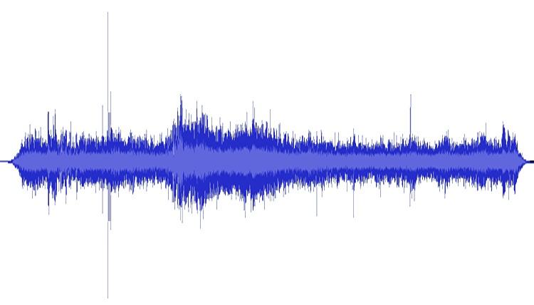 Über Vibrationen und Resonanzen – Essay